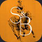 Stick & Ball logo
